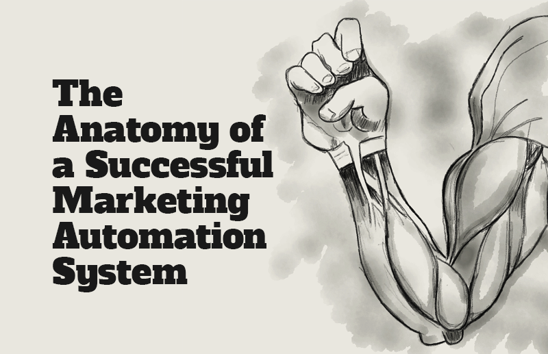 The Anatomy of a Successful Marketing Automation System